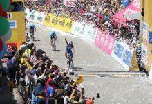 Julian Alaphilippe confirma presencia en el Tour Colombia 2.1