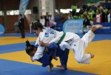 Judo ya cuenta con su proyecto avanzado de desarrollo